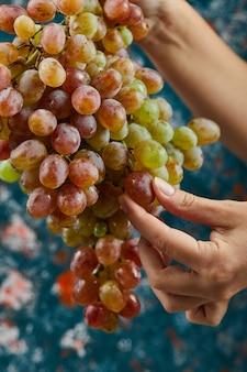 青い背景に赤いブドウを持っている手。高品質の写真