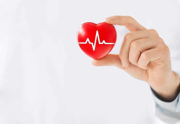 A hand holding a red heart with ecg line.