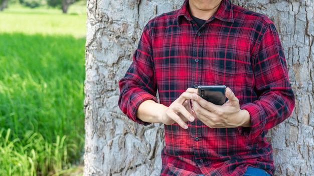 Hand holding smartphone with green rice field.