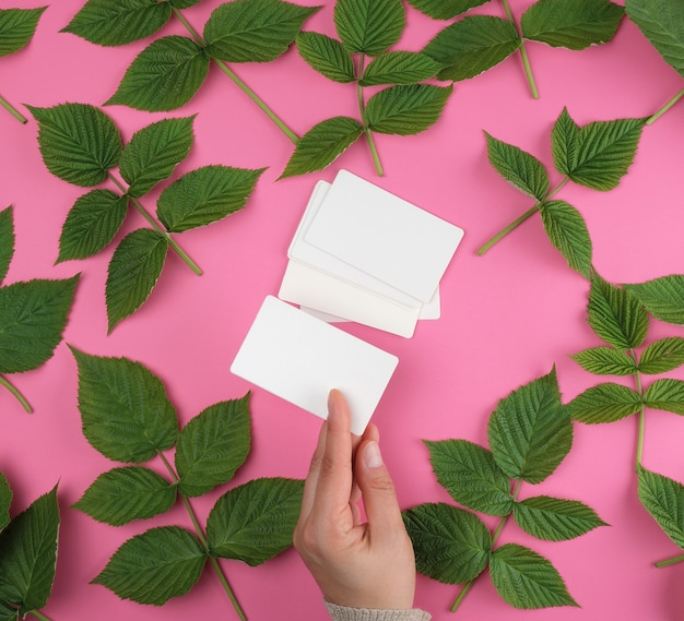 Hand holding a stack of white empty paper business cards