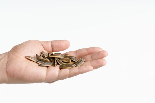 Рука держит семена подсолнечника