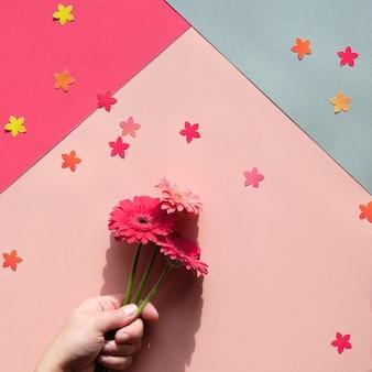 Рука держит три цветка ромашки герберы на двухцветной геометрической бумаге