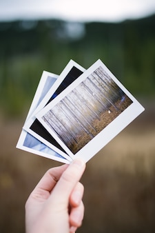 Hand holding three vintage instant film photos of nature