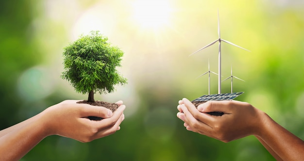 Hand holding tree with turbine and solar panel.