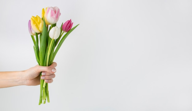 Hand holding tulips bouquet