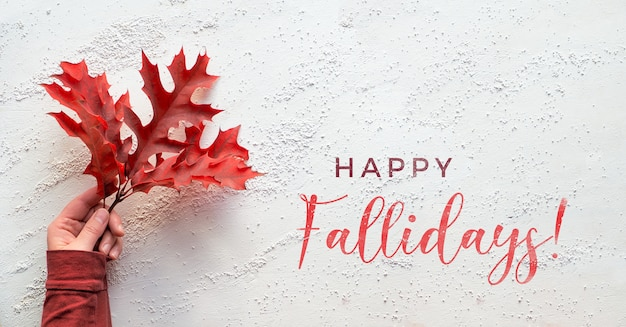 Hand holding twig with vibrant red oak leaves, text happy fallidays. panoramic flat lay on white textured background.