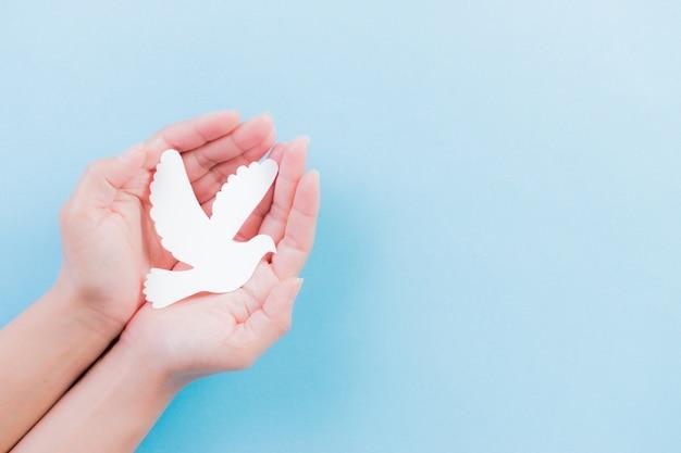 Рука держит белый голубь на синем