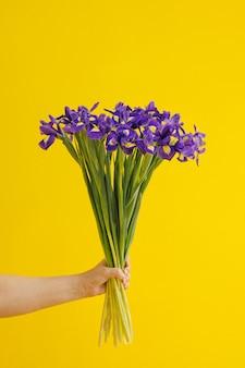 手は黄色の背景に青い菖蒲の花束を持っています。誕生日、3月8日女性の日、愛とお祝いのコンセプト。垂直側面図
