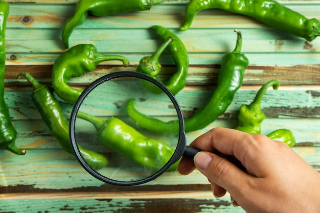 Hand holds a magnifier to see quality hot pepper on wooden background.