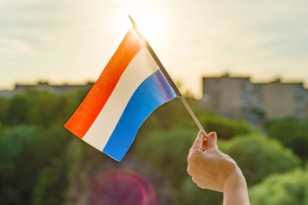 Hand holds netherlands flag an open window