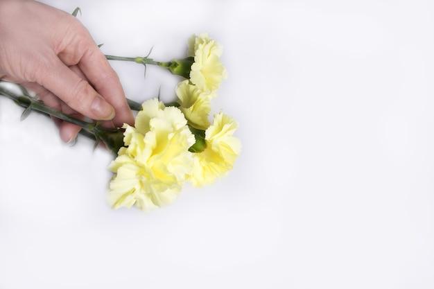 손 보유 노란 꽃
