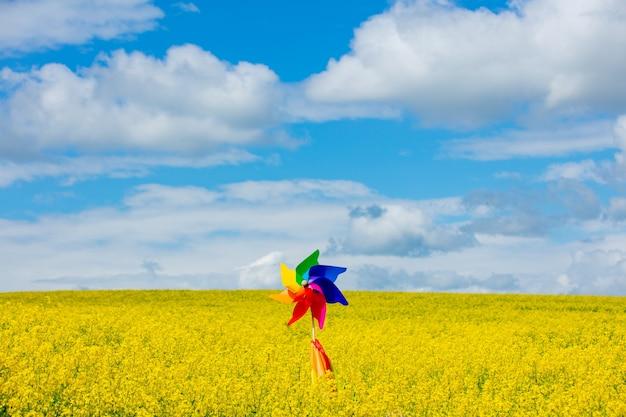 菜種畑の手ホリディング風車とレインボーフラッグ