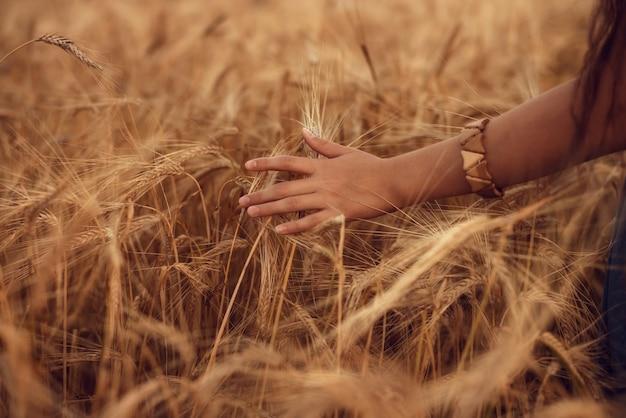 Рука в пшеничном поле. молодая девушка идет через поле и касается пшеницы.