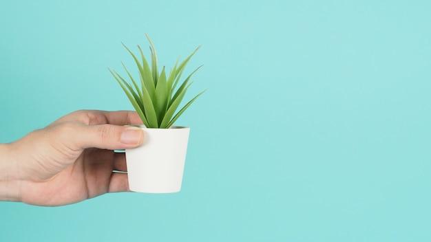 손은 민트 그린이나 티파니 블루 배경에 인공 선인장 식물이나 플라스틱 나무를 들고 있습니다.