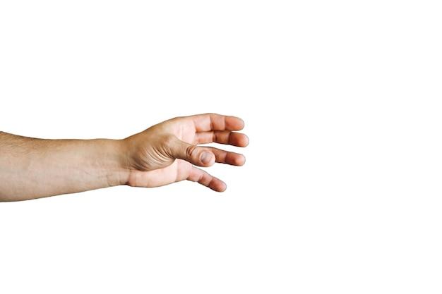 흰색 배경에 고립 된 손입니다.