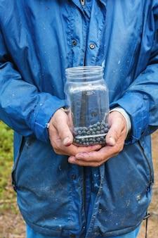 森の中に森のブルーベリーの実がいっぱい入った容器を持ったピッカーの手。