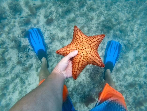 背景に足ひれでヒトデを水中で保持しているシュノーケラーの手