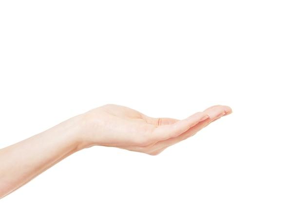 흰색 배경에 손
