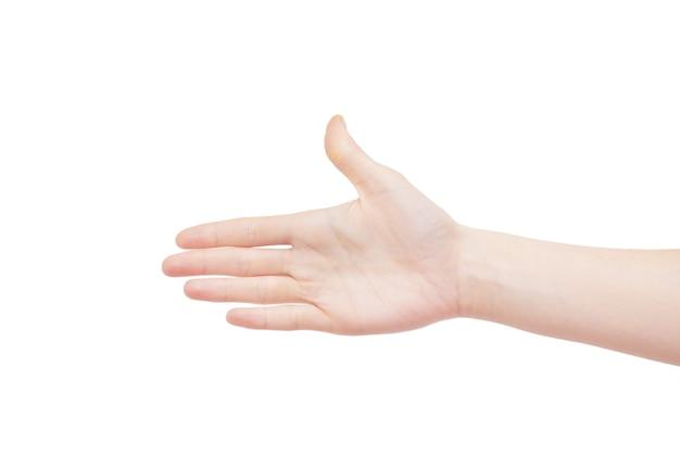 白い表面に手