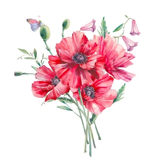 Hand painted floral composition. watercolor botanical illustration of poppy flowers and leaves. natural objects isolated on white background