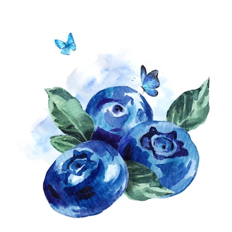 Hand painting summer watercolor blueberries