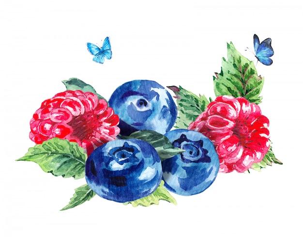 Hand painting summer watercolor raspberries blueberries