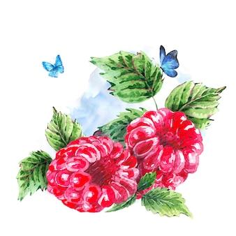 Hand painting summer watercolor raspberries
