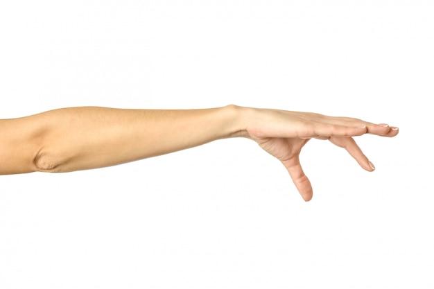 손 따기, 잡기, 잡기 또는 손이 닿는 곳. 여자 손 몸짓에 고립 된 화이트