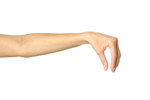 Собирание, удержание, хватание или дотягивание руками. рука женщины с показывать французский маникюр изолированный на белой предпосылке. часть серии