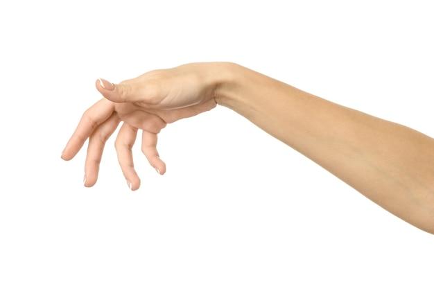 手で摘む、握る、つかむ、または手を伸ばす。白い壁に分離されたフランスのマニキュアジェスチャーで女性の手。シリーズの一部