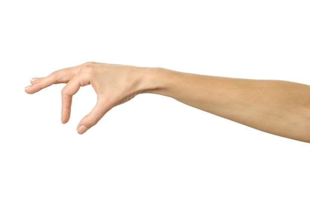 Hand picking, holding, grabbing or reaching hand on white