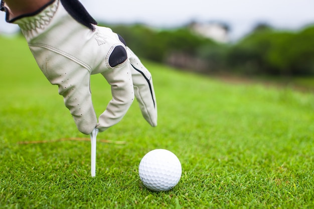 Hand placing golf-ball on tee over beautiful golf course with green grass