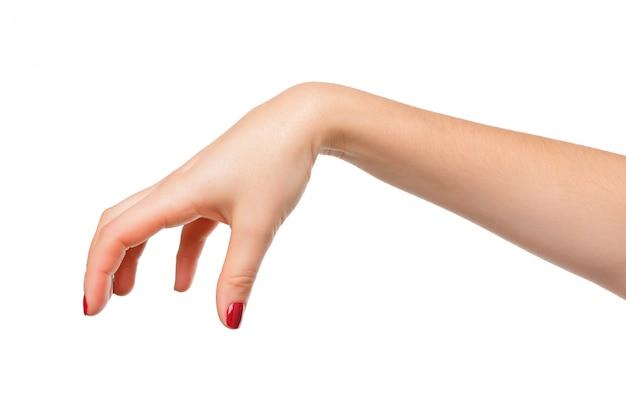 손으로 뭔가 흰색 절연 따기 포즈