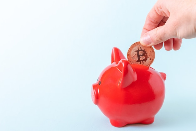 A hand puts a bitcoin coin in a red piggy bank on a blue background, close-up, copy space. cryptocurrency savings concept.