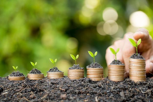 緑のボケ味を持つグラフを成長しているコインスタックにコインを置く手
