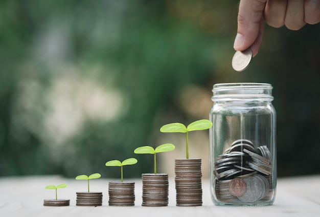 Hand putting coin to saving money jar and growth coins stacking with plant , money saving and dividend concept.