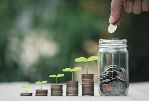 手でコインを節約するためのお金の瓶と植物と積み重ねる成長コイン、お金の節約と配当の概念。