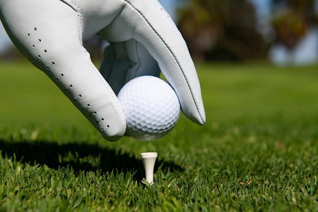 골프 코스에서 티에 골프 공을 퍼팅하는 손. 잔디에서 골프 공입니다.