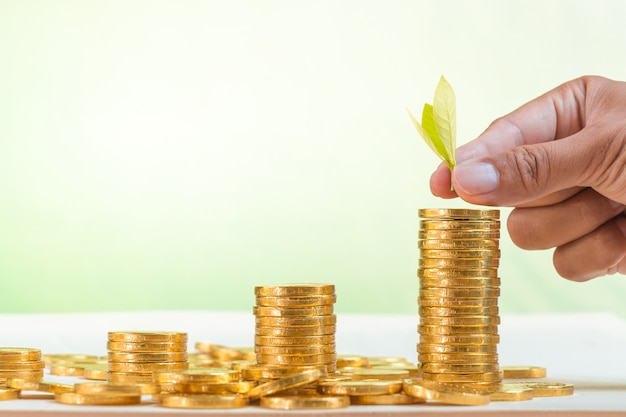 Hand putting leaves on golden coins stack