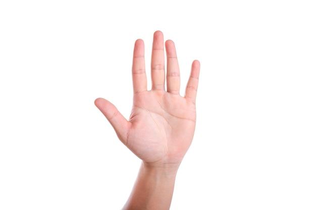 手を上げて白い背景で隔離。手を挙げて投票またはコメントしてください。