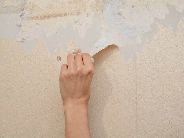Hand removes old wallpaper from the wall. the concept of repair.