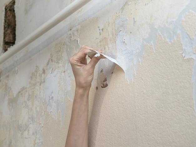 Рука удаляя старые обои во время ремонта.