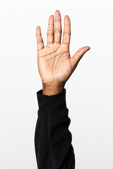 Hand showing palm gesture with black long sleeve