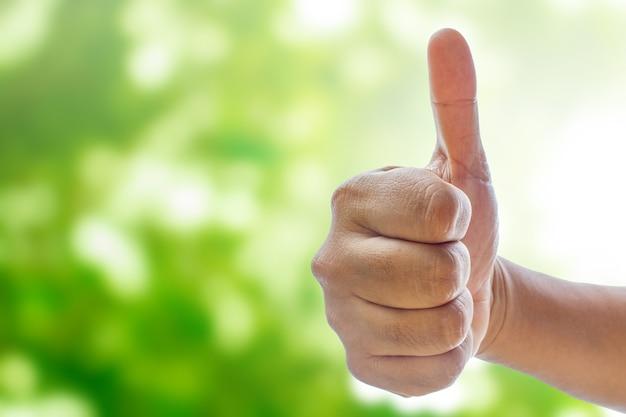 자연 bokeh에 엄지 손가락 기호를 보여주는 손 흐리게 추상적 인 배경