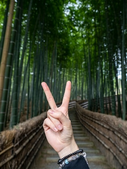 Hand showing victory peace sign on bamboo forest