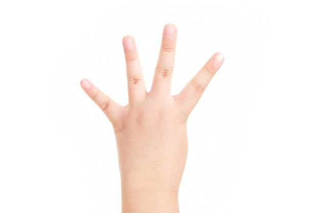 Hand shown four finger symbol on isolated