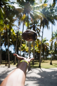 Hand throwing rock with palm trees background