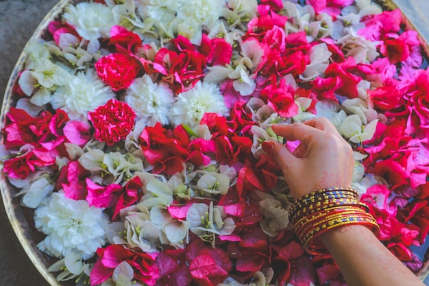Hand wearing bangles pick up colourful flowers on water