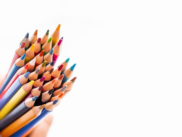 Hand with bunch of colorful pencils on white background