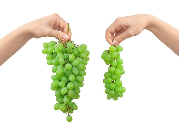 白い背景で隔離の緑のブドウと手